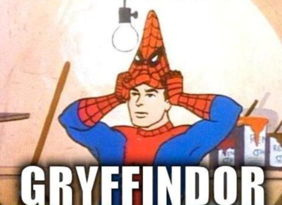 Image result for Gryffindor Spider Man